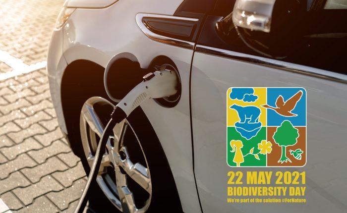 blink biodiversity